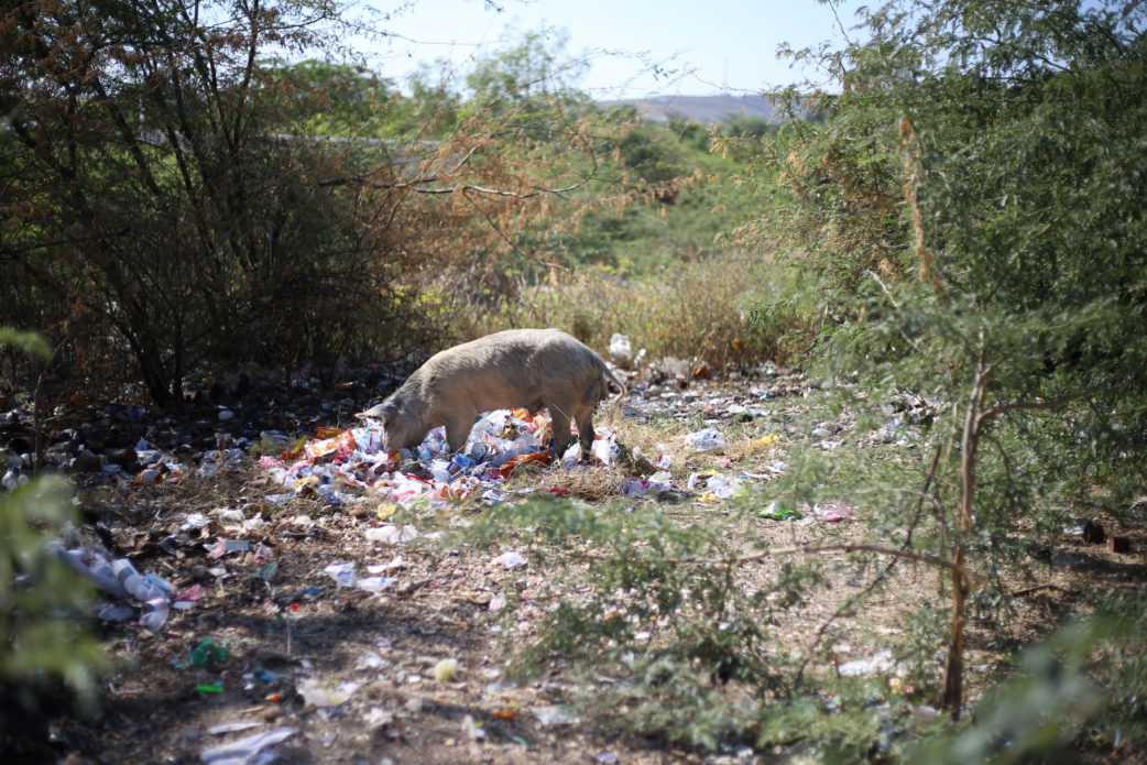 Haiti & it's plastic problem. What can we do?